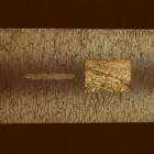 Graciela Zar -  Habitaciones disponibles - Aguafuerte - 50 x 69 cm - 2002